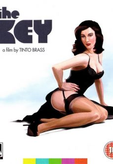 Tinto Brass Filmi The Key Türkçe Dublaj İzle izle